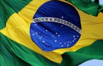 ANADIP do Brasil e sua função Precursora